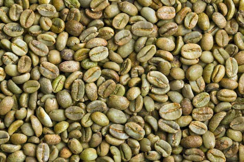 Idealica - Componente natural # 1 Extracto de café verde