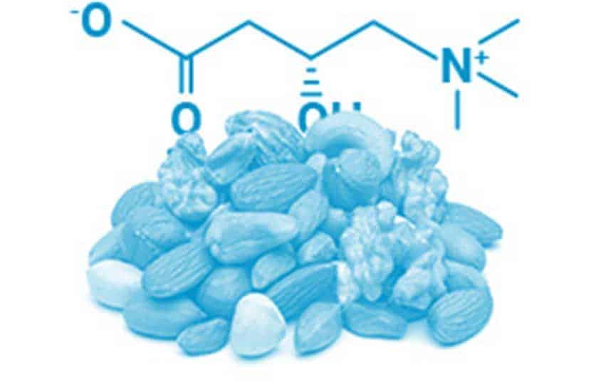 La L-carnitina puede ayudar a mejorar la masa muscular