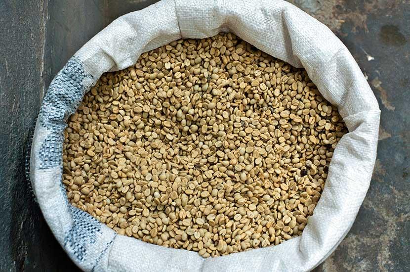 El ácido clorogénico está presente en el café verde sin tostar.