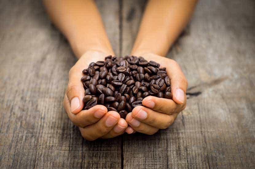 La cafeína es uno de los ingredientes activos de PhenQ