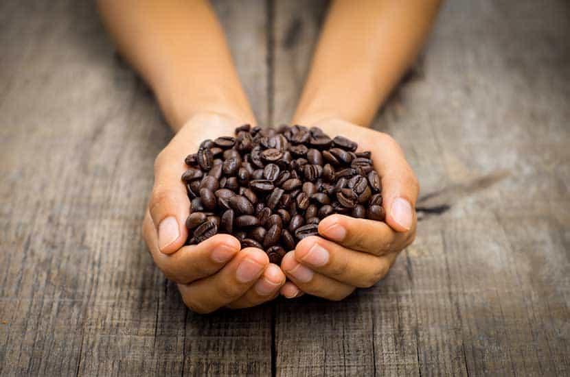 La cafeína puede penetrar el cuero cabelludo.