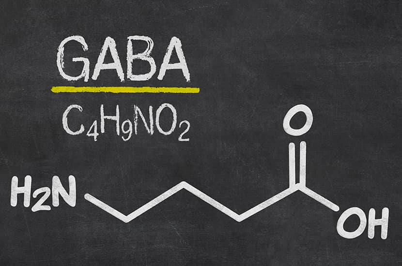 Los estudios muestran que el GABA puede aumentar la masa muscular