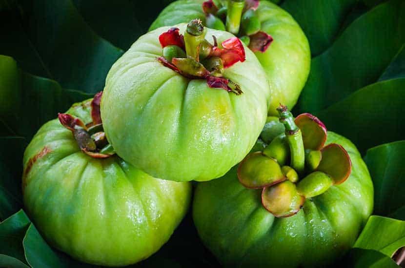 Garcinia cambogia es una fruta rica en ácido hidroxicítrico