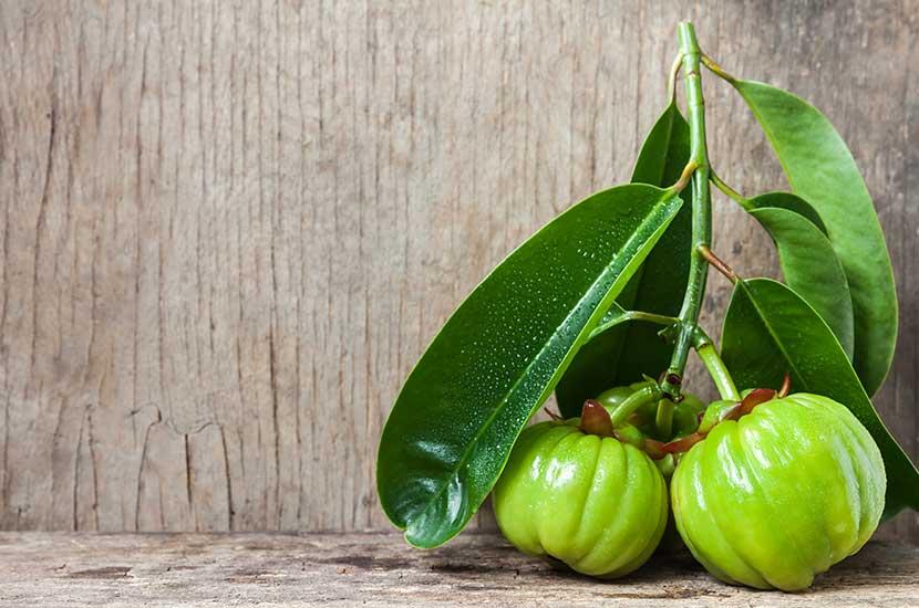 El extracto de garcinia cambogia puede ayudar a controlar el apetito