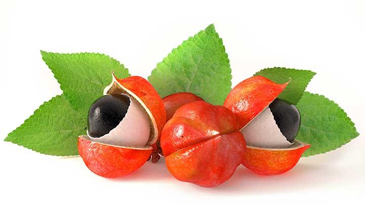 Además de prevenir la acumulación de grasa corporal, el guaraná te ayudará a sentirte con más energía.