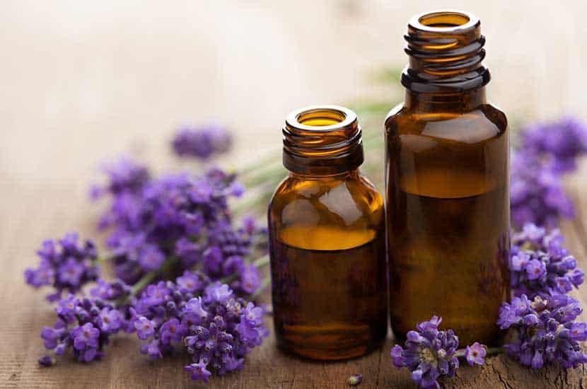 Los aceites esenciales tienen importantes propiedades antifúngicas.
