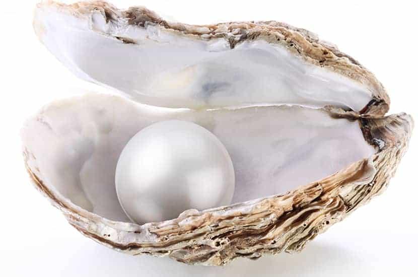 El polvo de perlas se obtiene triturando las perlas hasta obtener un polvo fino.