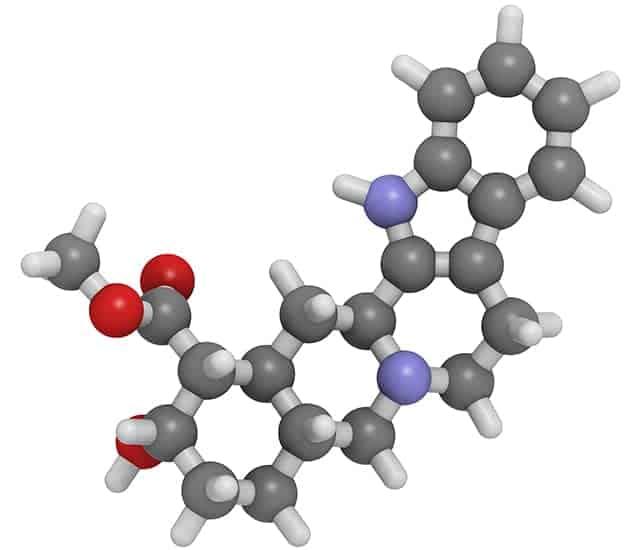 La yohimbina es un extracto obtenido de la corteza del árbol yohimbe (Pausinystalia yohimbe). En África, este extracto se utiliza como afrodisíaco. Además, los científicos han descubierto que la yohimbina puede ser eficaz para tratar la disfunción eréctil (mejora la potencia) y también puede ayudar con los trastornos orgásmicos, como la eyaculación retardada.